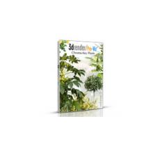 Pro-Viz Plant Textures 03